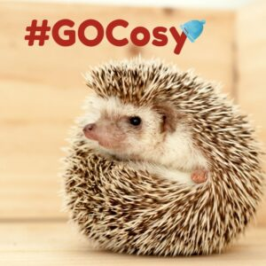 Go Cosy logo with hedgehog