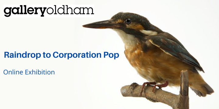 Kingfisher image promoting Raindrop to Corporation Pop exhibition
