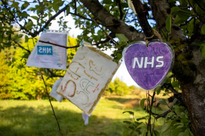 NHS and Stay Safe signs hanging in a tree.