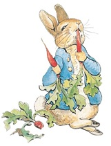 Peter Rabbit illustration showing him eating carrots.