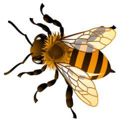 Illustration of a Bumble bee.